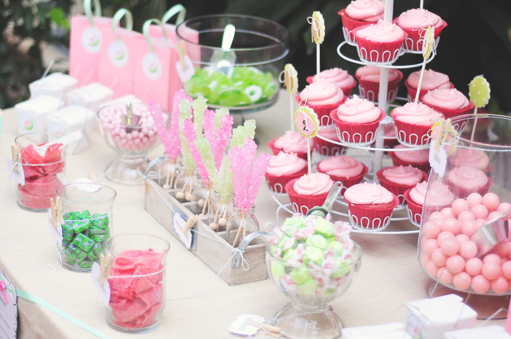 Two Peas In A Pod: Twin Girl Baby Shower
