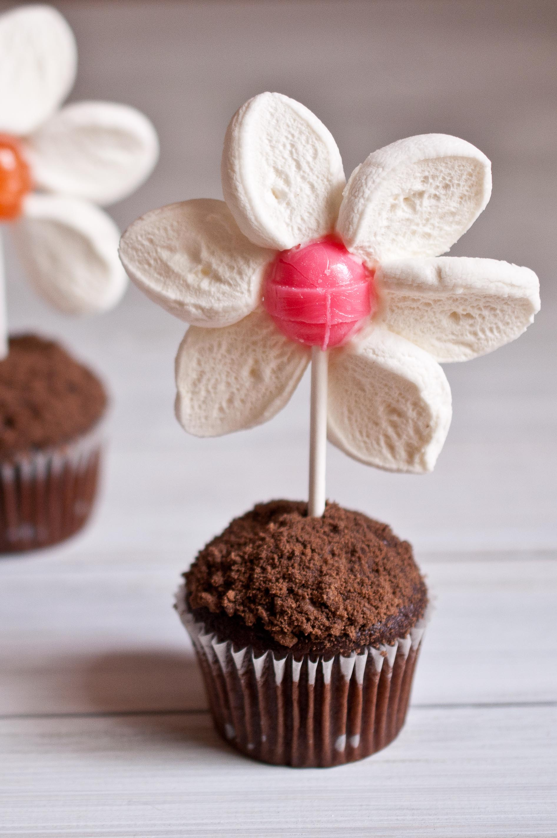 Food Craft Spring Flower Pot Mini Muffins