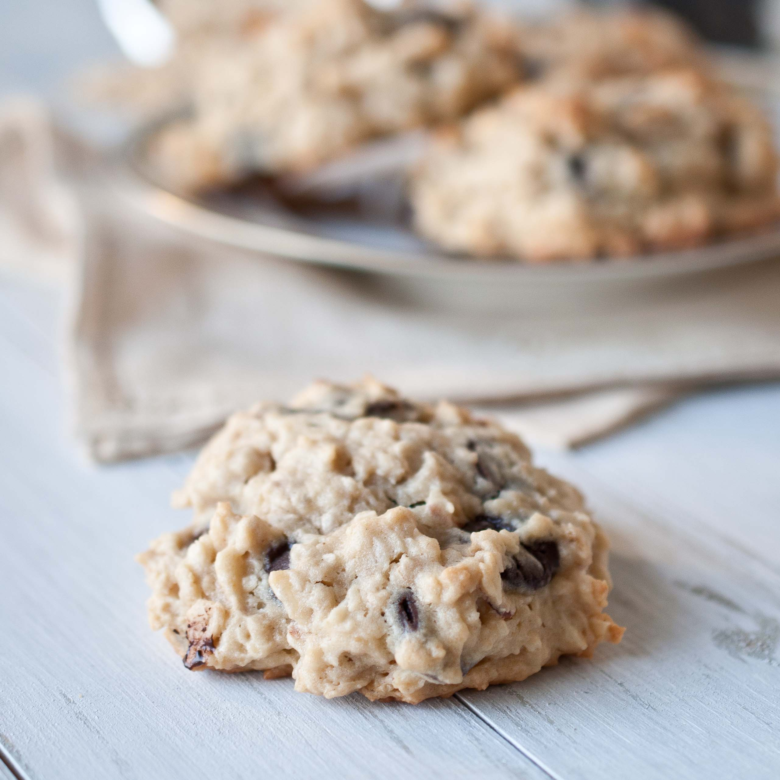 Coconut Chocolate Chip Oatmeal Cookies - Domestic Fits
