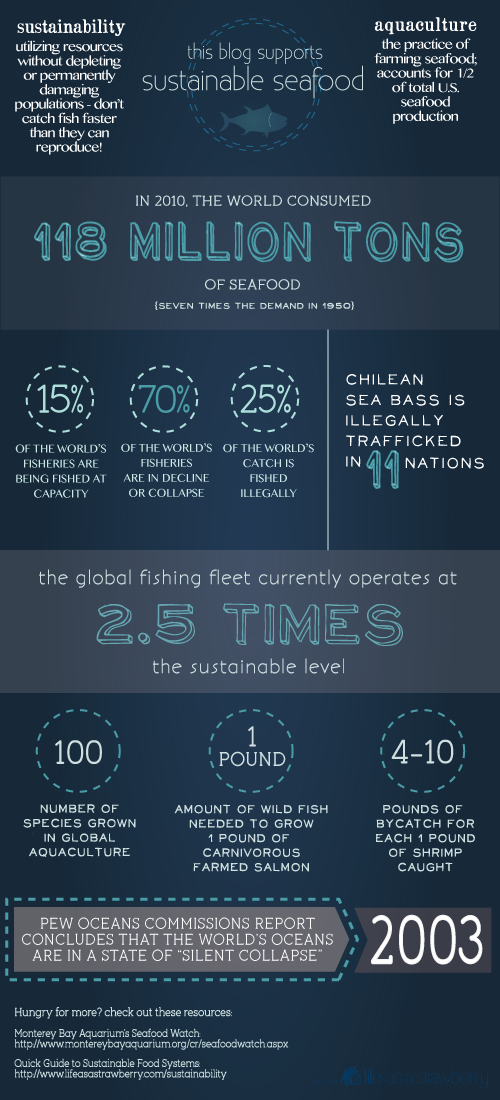 How to support sustainable seafood