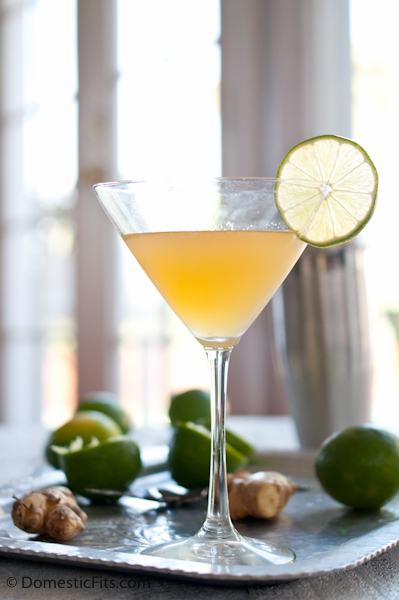 Ginger Lime Daiquiri2