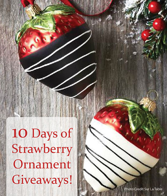 Win-Strawberry-Ornaments 545